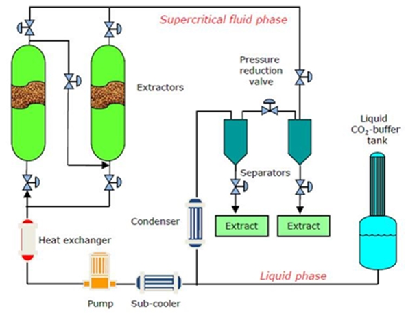 Extraction & Fractionation